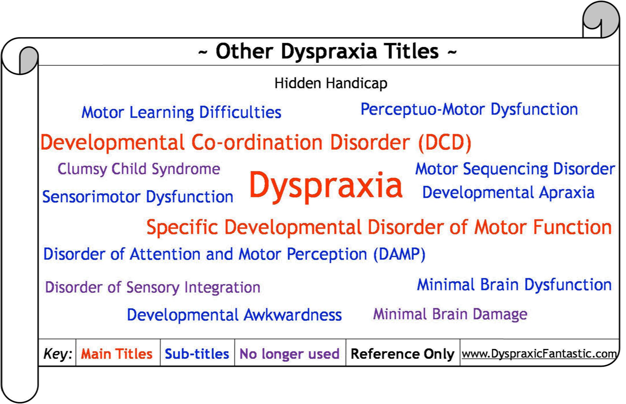 Other Dyspraxia Titles
